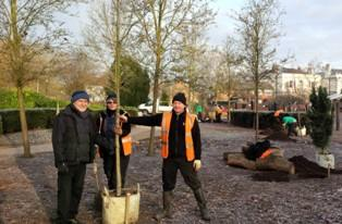 Tree planting in the Sensory Garden